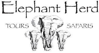 Elephant Herd Tours & Safaris