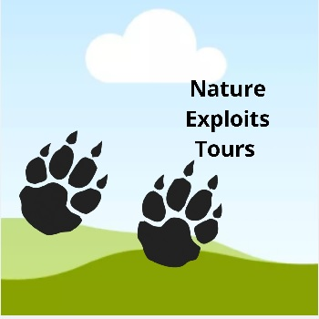 Nature Exploits Tours